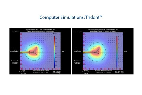 Computer Simulations: Trident™